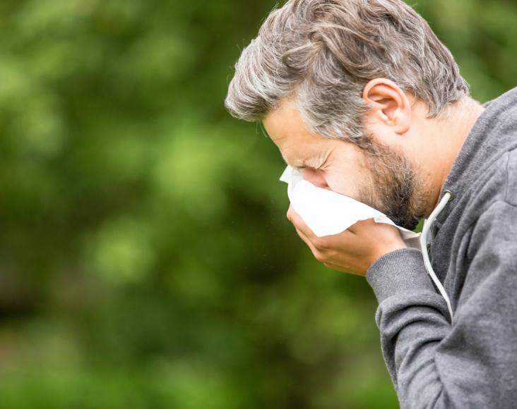 Síntomas: Rinosinusitis